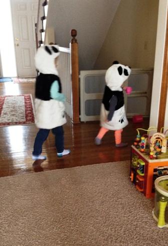 strollin' pandas
